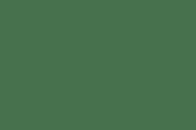 'Koruru' bone carving by Adrian Wills
